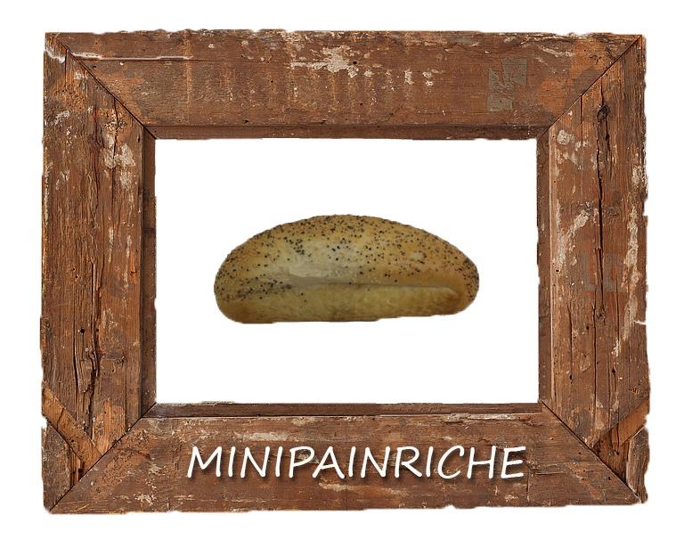Minipainriche